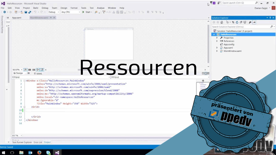 2017/Trainer/Ressourcen-User-Control-Library-WPF-ResourceDictionary-wpf-visual-studio-DarianGajgic